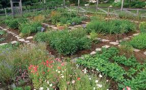 Intensive Garden