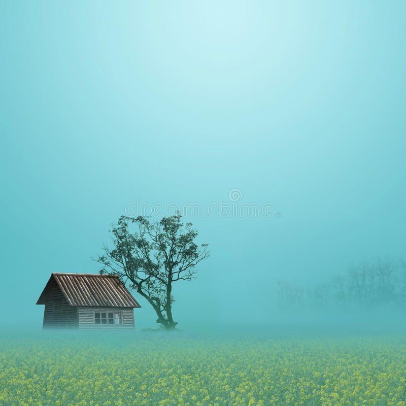 rural-scenery-15955289